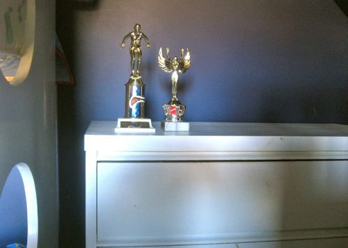 trophies as decor