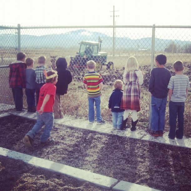 boys watching tractor over fence instagram