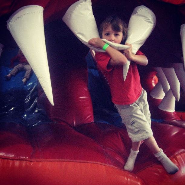 little boy bounce house kangaroo zoo instagram