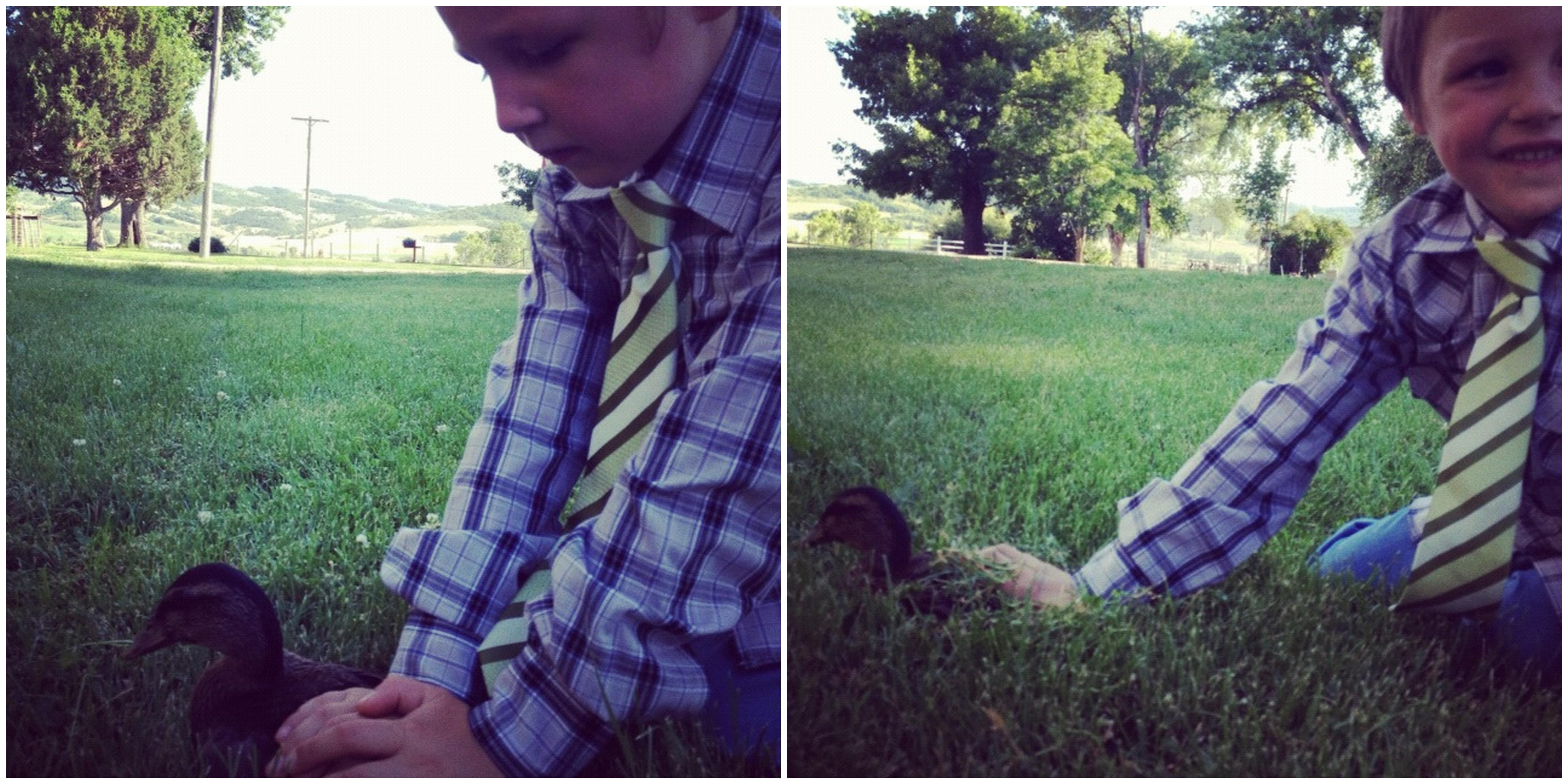 little kids chasing ducks instagram