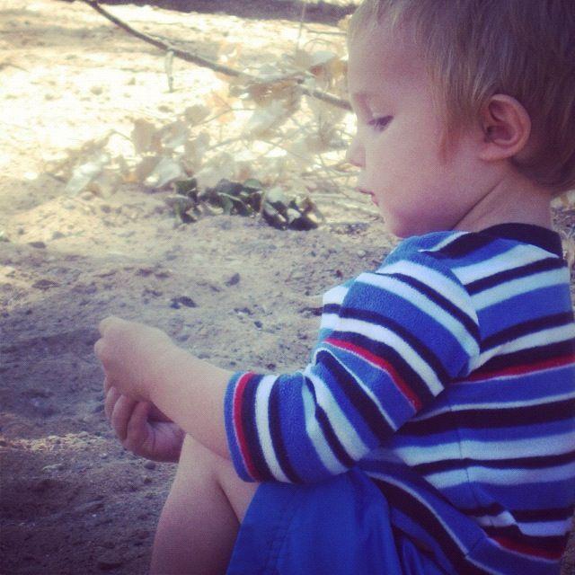 little toddler boy beach instagram