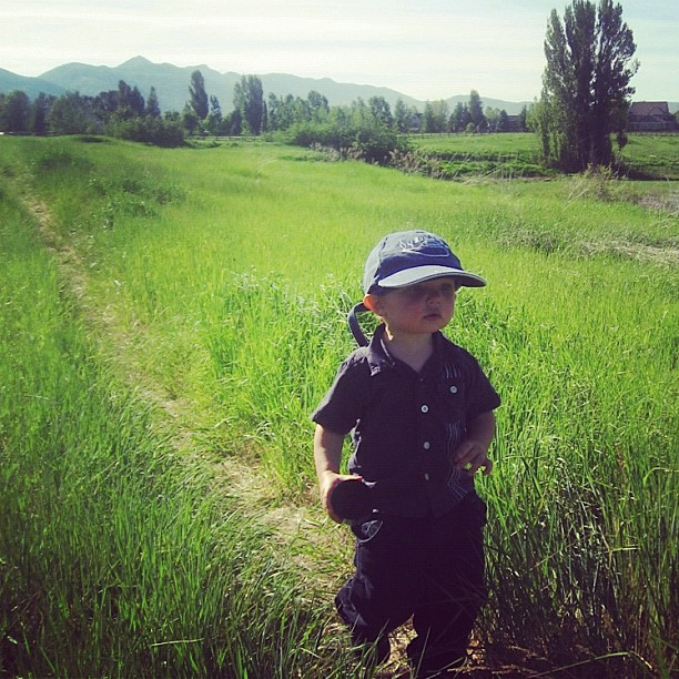 toddler little boy hiking on trail instagram