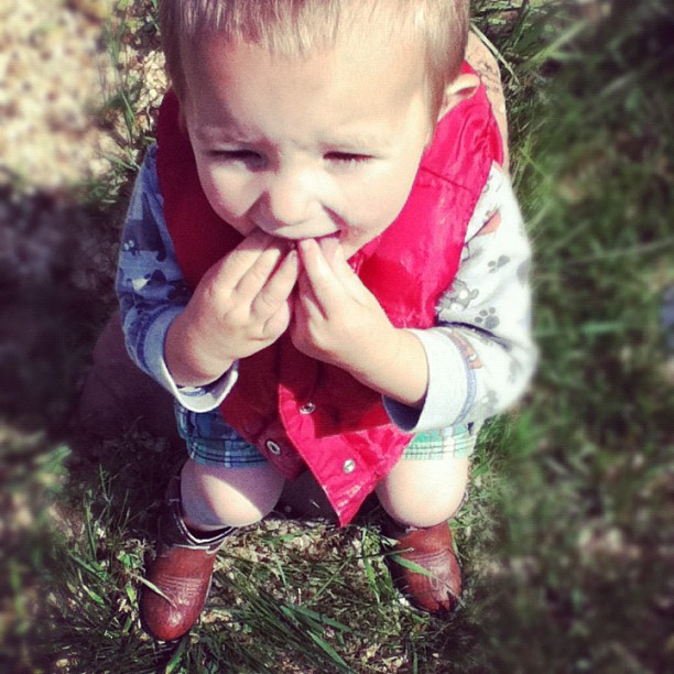 little toddler boy cowboy boots instagram
