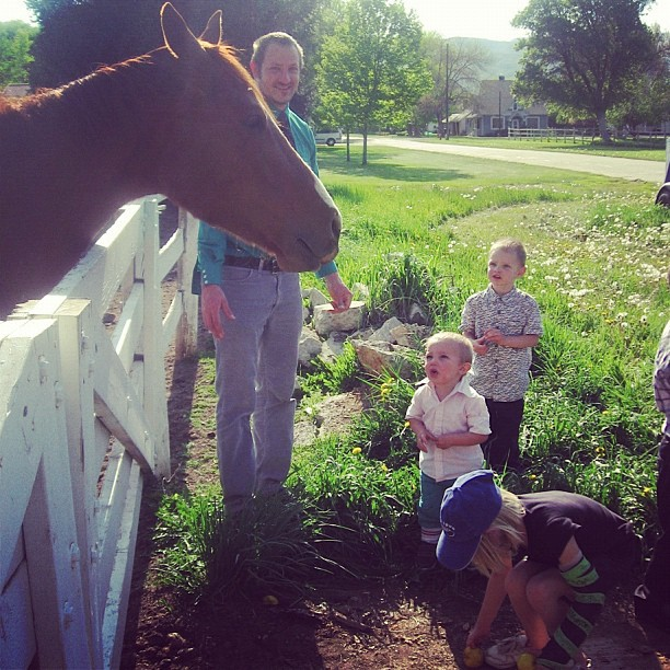 kids and dad feeding horses instagram