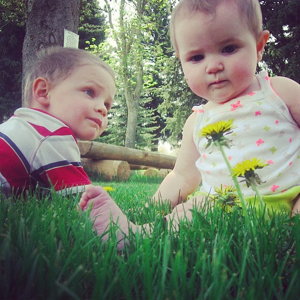 little boy and baby girl sitting in front of dandelions instagram