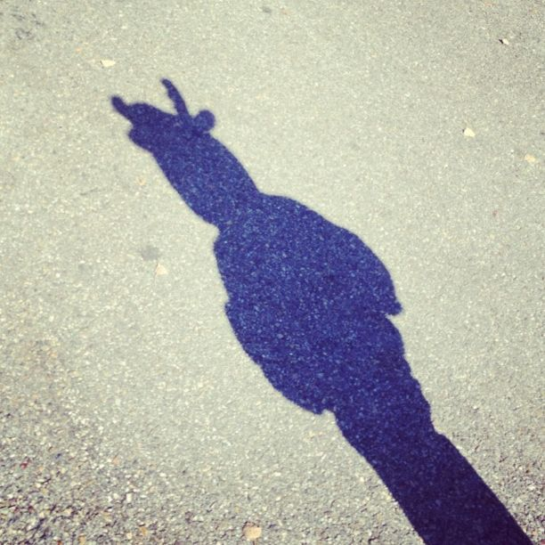 little boy moose costume shadow