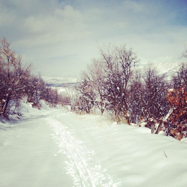 cross country ski track instagram