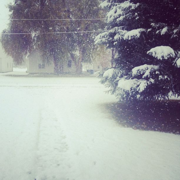 falling snow instagram