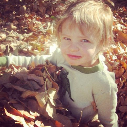little boy sitting in leaves instagram