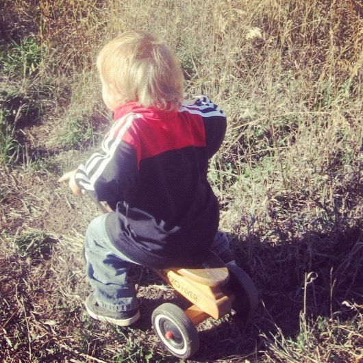 toddler boy radio flyer mountain bike pasture instagram