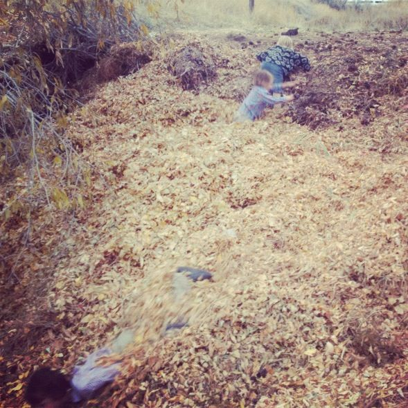 kids jumping in giant leaf pile instagram