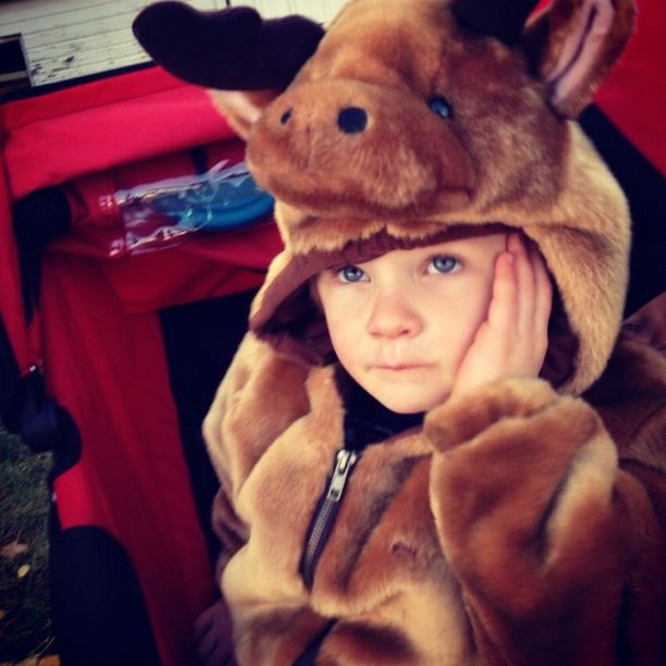 little boy dressed as moose deer instagram