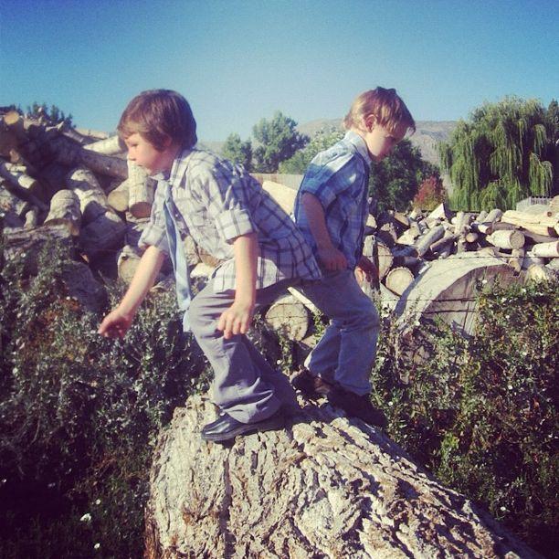kids jumping on logs instagram