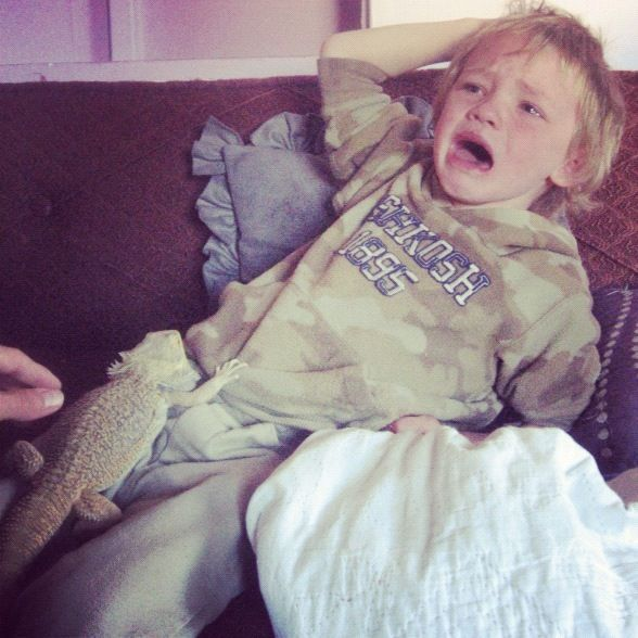 little boy holding lizard crying instagram