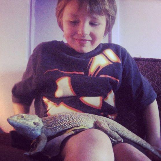 little boy holding lizard instagram