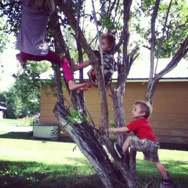 little boys and girl in tree instagram