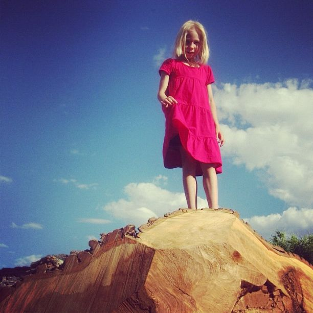 girl climbing fallen tree instagram