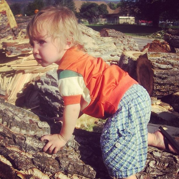 little boy climbing fallen tree instagram