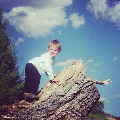 boy climbing fallen tree instagram