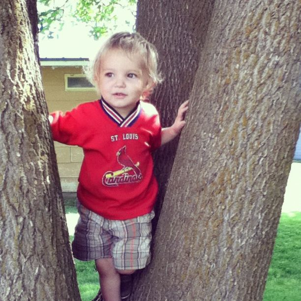 little boy in tree instagram