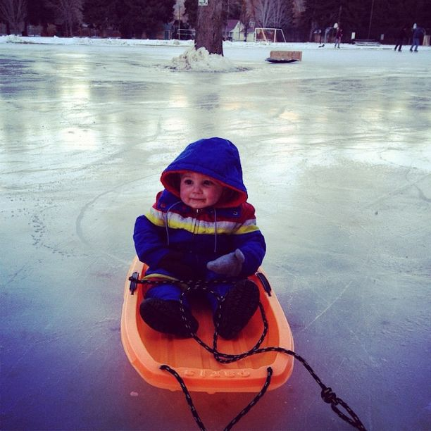 little boy sled ice skating rink instagram