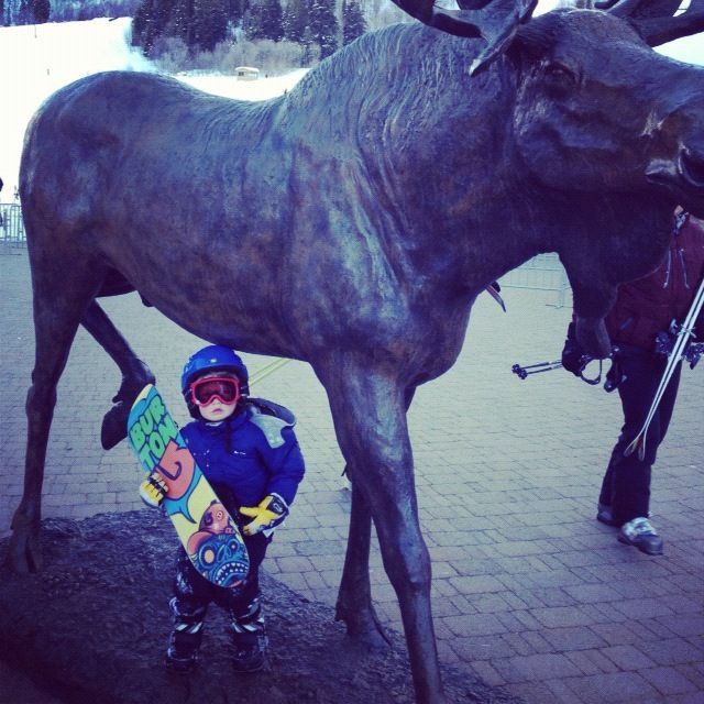 little boy snow board moose sculpture instagram