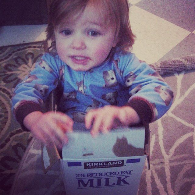 little boy in milk cardboard box instagram