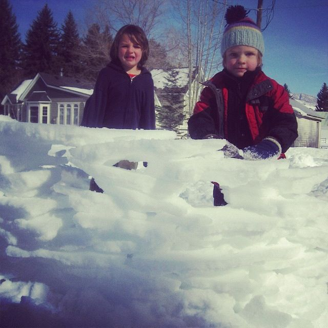 little boys snow fort instagram