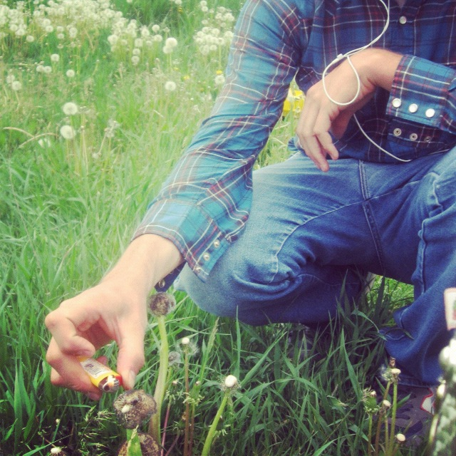 man burning dandelions with lighter instagram