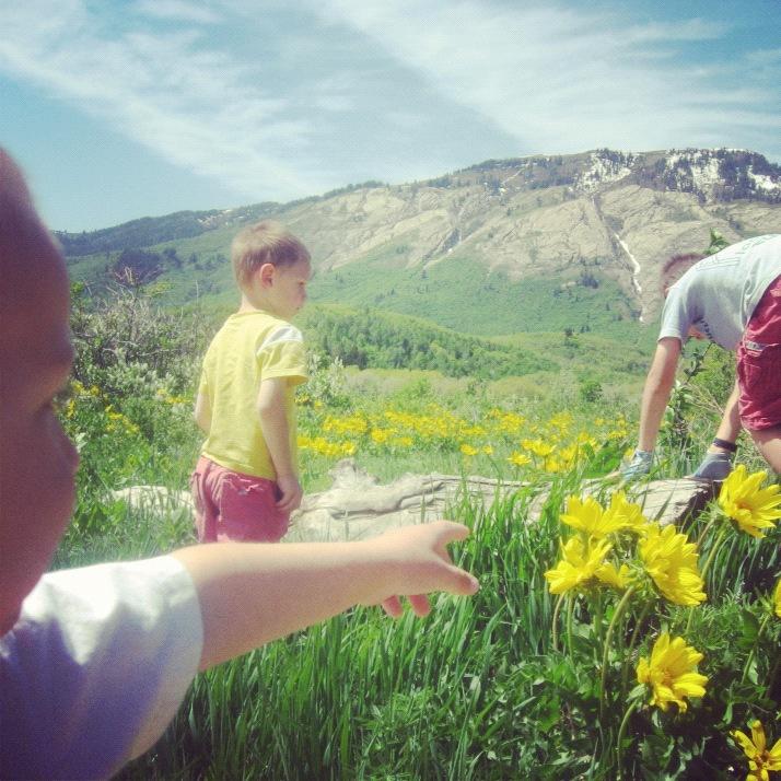 little boy mountain instagram