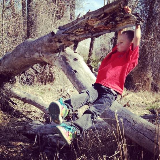 boy swinging on tree trunk instagram