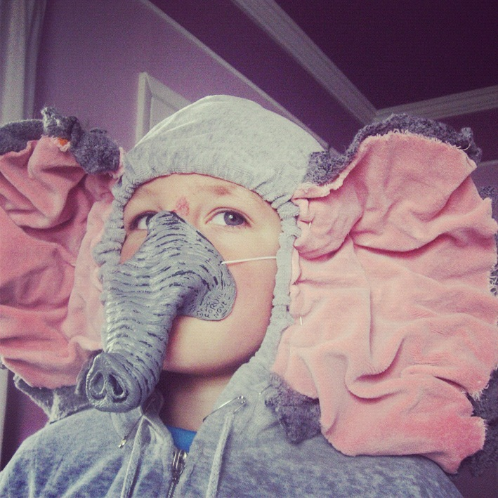 little boy elephant suit instagram