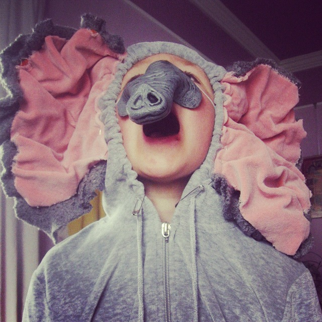 little boy elephant costume instagram
