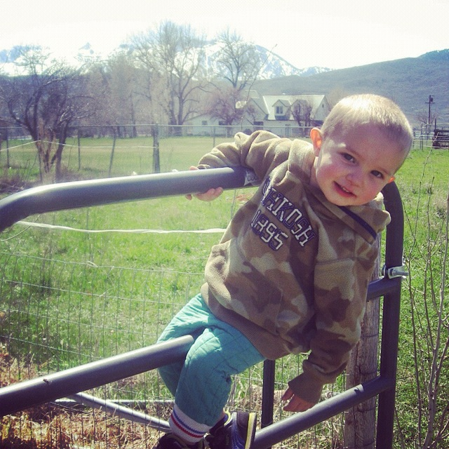 little boy outside gate instagram