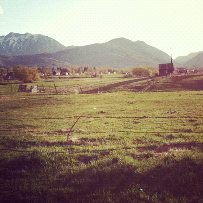 mountain valley pasture instagram