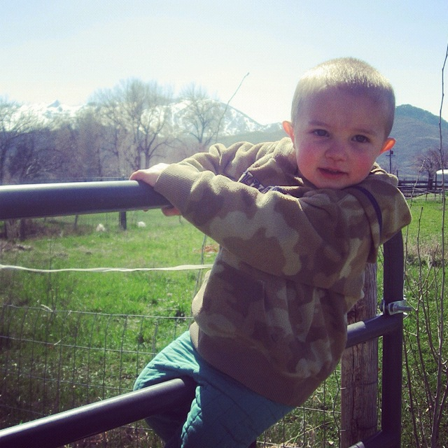 little boy gate instagram